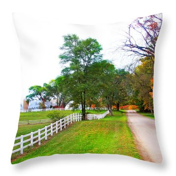 Quintessence Of Autumn Throw Pillow