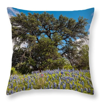 Quintessential Texas Hill Country County Road Bluebonnets And Oak - Llano Throw Pillow