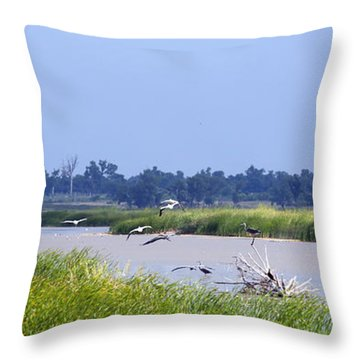 Quivira Refuge Throw Pillow
