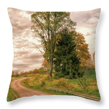 Throw Pillow featuring the photograph Quixotic Travels by John M Bailey