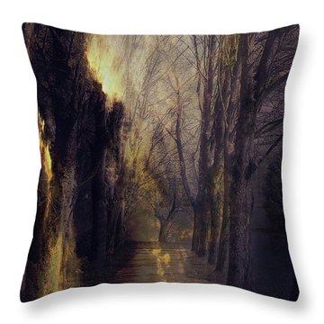 Quo Vadis  -  Memory Lane Throw Pillow