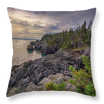 Throw Pillow featuring the photograph Quoddy Head State Park by Rick Berk