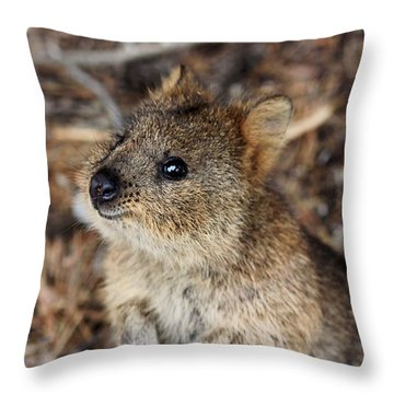 Quokka Throw Pillow