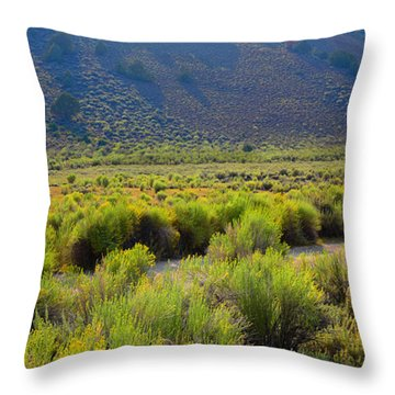 Rabbit Brush In Bloom Throw Pillow