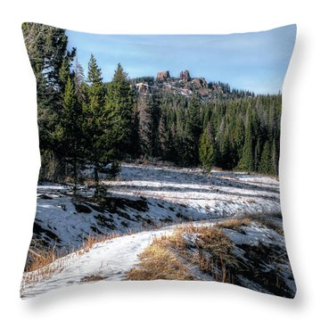 Rabbit Ears Pass Throw Pillow by Jim Hill