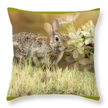 Eastern Cottontail Rabbit In Grass Throw Pillow