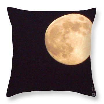 Throw Pillow featuring the photograph Rabbit In The Moon by Phyllis Kaltenbach