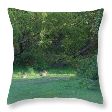 Rabbit Meadow Throw Pillow by Gary Bridger