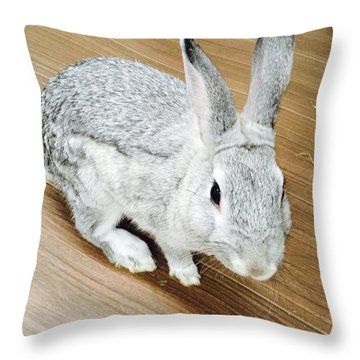 Rabbit Throw Pillow by Nao Yos