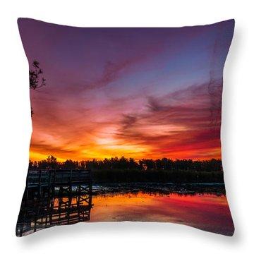 Throw Pillow featuring the photograph Rabbit Run Aurora by Chris Bordeleau