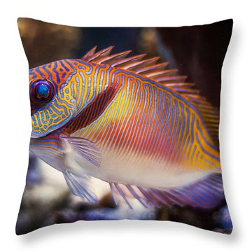 Rabbitfish Throw Pillow