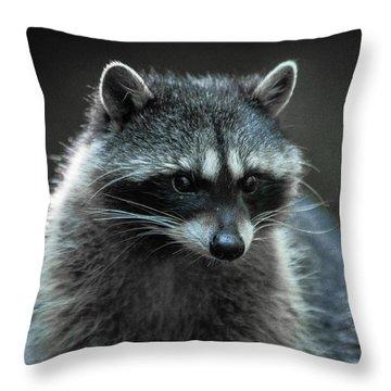 Raccoon 2 Throw Pillow