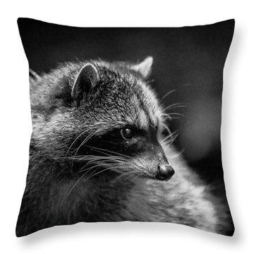 Raccoon 3 Throw Pillow