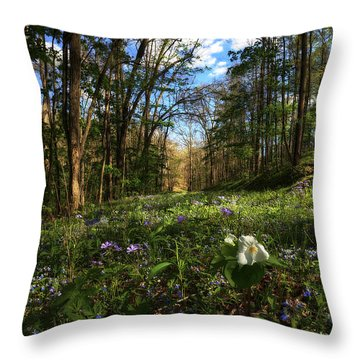 Raccoon Creek Flowers Throw Pillow