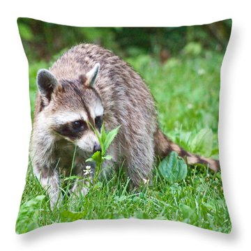 Raccoon Smelling Flowers Throw Pillow