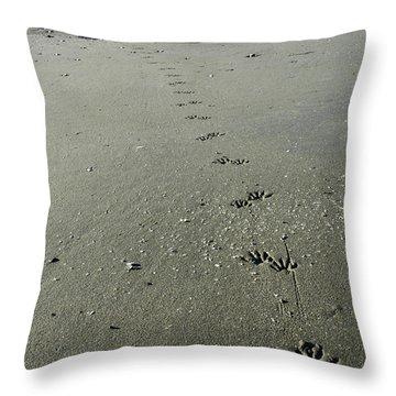 Raccoon Tracks Throw Pillow