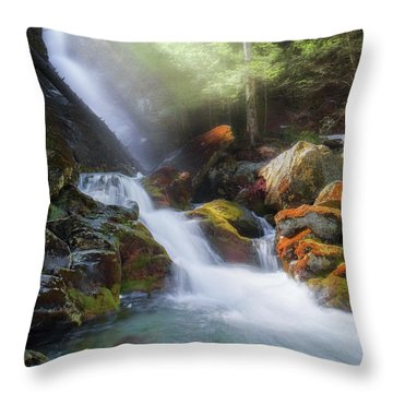 Throw Pillow featuring the photograph Race Brook Falls 2017 by Bill Wakeley