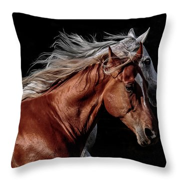 Racing With The Wind Throw Pillow