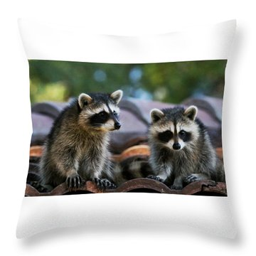 Racoons On The Roof Throw Pillow