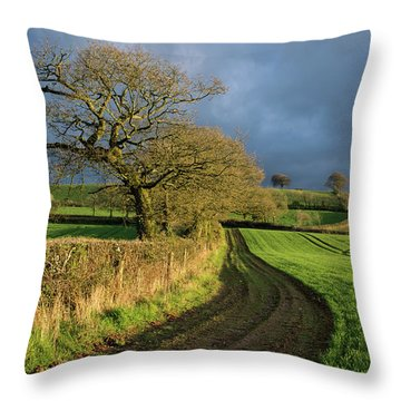 Raddon Top In Mid Devon Throw Pillow