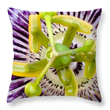 Radial Arms  Throw Pillow by Christopher Holmes