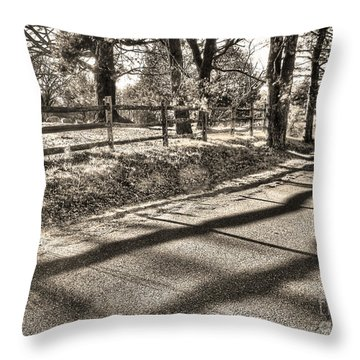 Throw Pillow featuring the photograph Radiance by Betsy Zimmerli