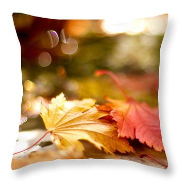 Radiance Throw Pillow by Linde Townsend