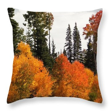 Radiant Autumnal Forest Throw Pillow by Deborah Moen