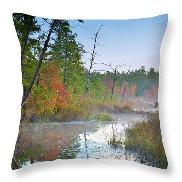Radiant Morning Throw Pillow