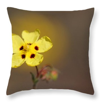 Throw Pillow featuring the photograph Radiate by Richard Patmore