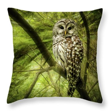 Radiating Barred Owl Throw Pillow