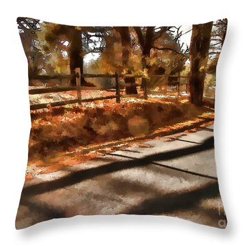 Throw Pillow featuring the photograph Radiating by Betsy Zimmerli