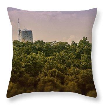 Radioactive Landscape Throw Pillow