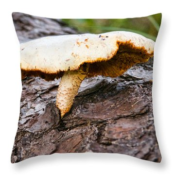 Raggedy Toadstool Throw Pillow