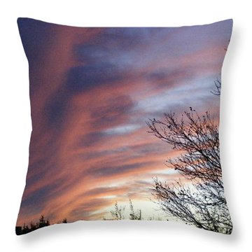 Throw Pillow featuring the photograph Raging Sky by Barbara Griffin