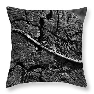 Railroad Tie Throw Pillow