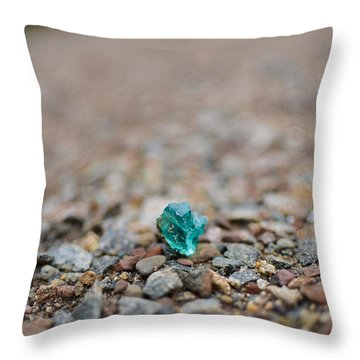 Trackside Treasure Throw Pillow