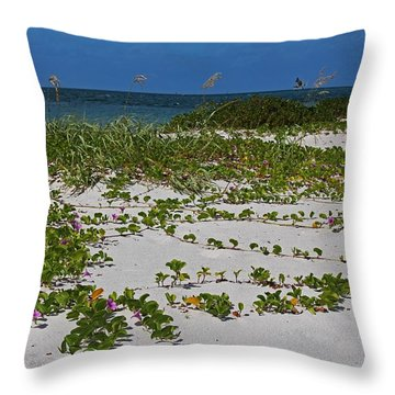 Railroad Vines On Boca IIi Throw Pillow