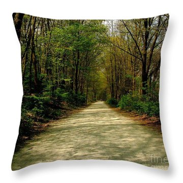Throw Pillow featuring the photograph Rails To Trails by Kristine Nora