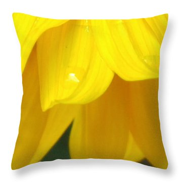 Rain And Sunshine On A Colorado Wildflower Throw Pillow