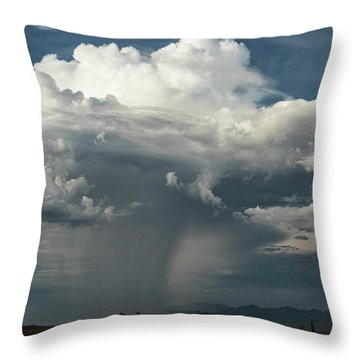 Throw Pillow featuring the photograph Rain, Beautiful Rain  by Saija Lehtonen