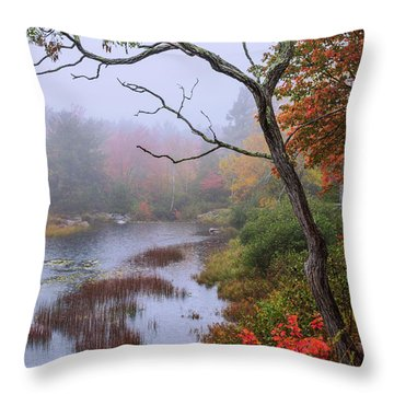 Throw Pillow featuring the photograph Rain by Chad Dutson