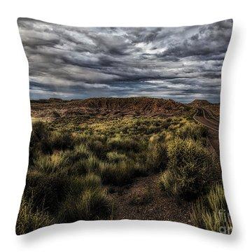 Rain Coming  ... Throw Pillow