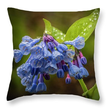 Rain Drop Bells Throw Pillow