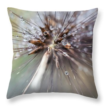 Rain Drops - 9756 Throw Pillow