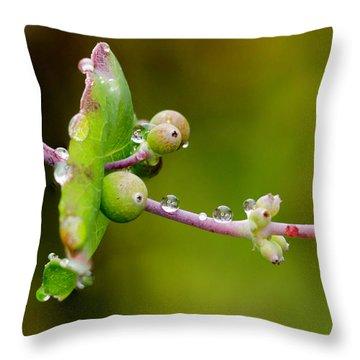 Rain Drops On A Stem Throw Pillow