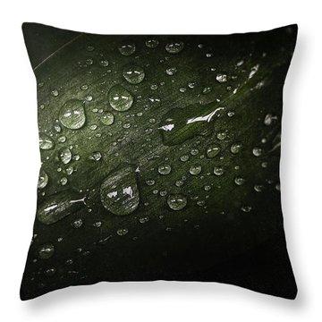 Rain Drops On Leaf Throw Pillow