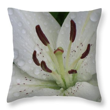 Rain Drops On Lily Throw Pillow