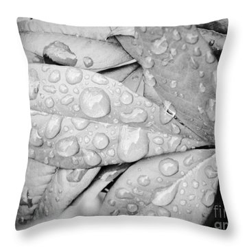 Rain Drops Throw Pillow by Robin Coaker