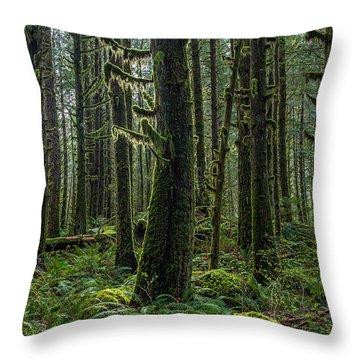 Rain Forest Of Golden Ears Throw Pillow